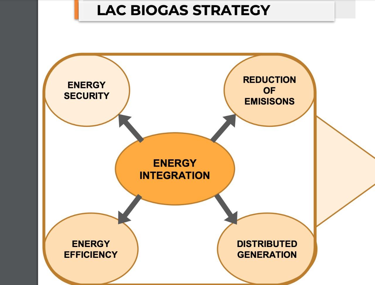 Estratégias para o desenvolvimento do biogás na América Latina.