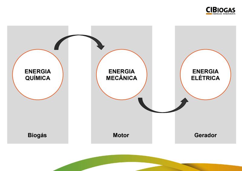 A conversão do biogás para energia elétrica se dá em apenas 3 passos.