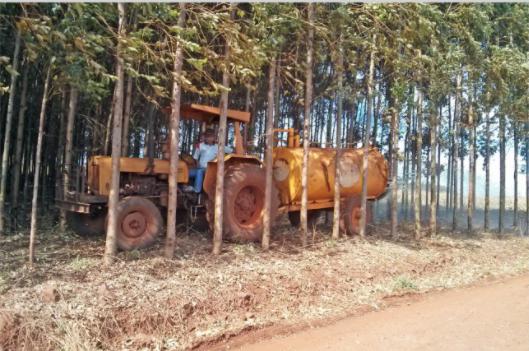 Biogás e meio ambiente