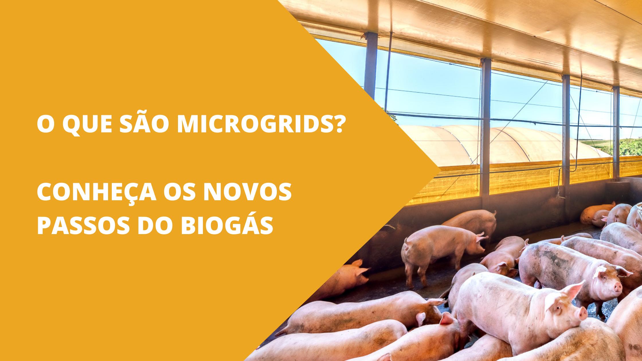 O QUE SÃO MICROGRIDS? CONHEÇA OS NOVOS PASSOS DO BIOGÁS