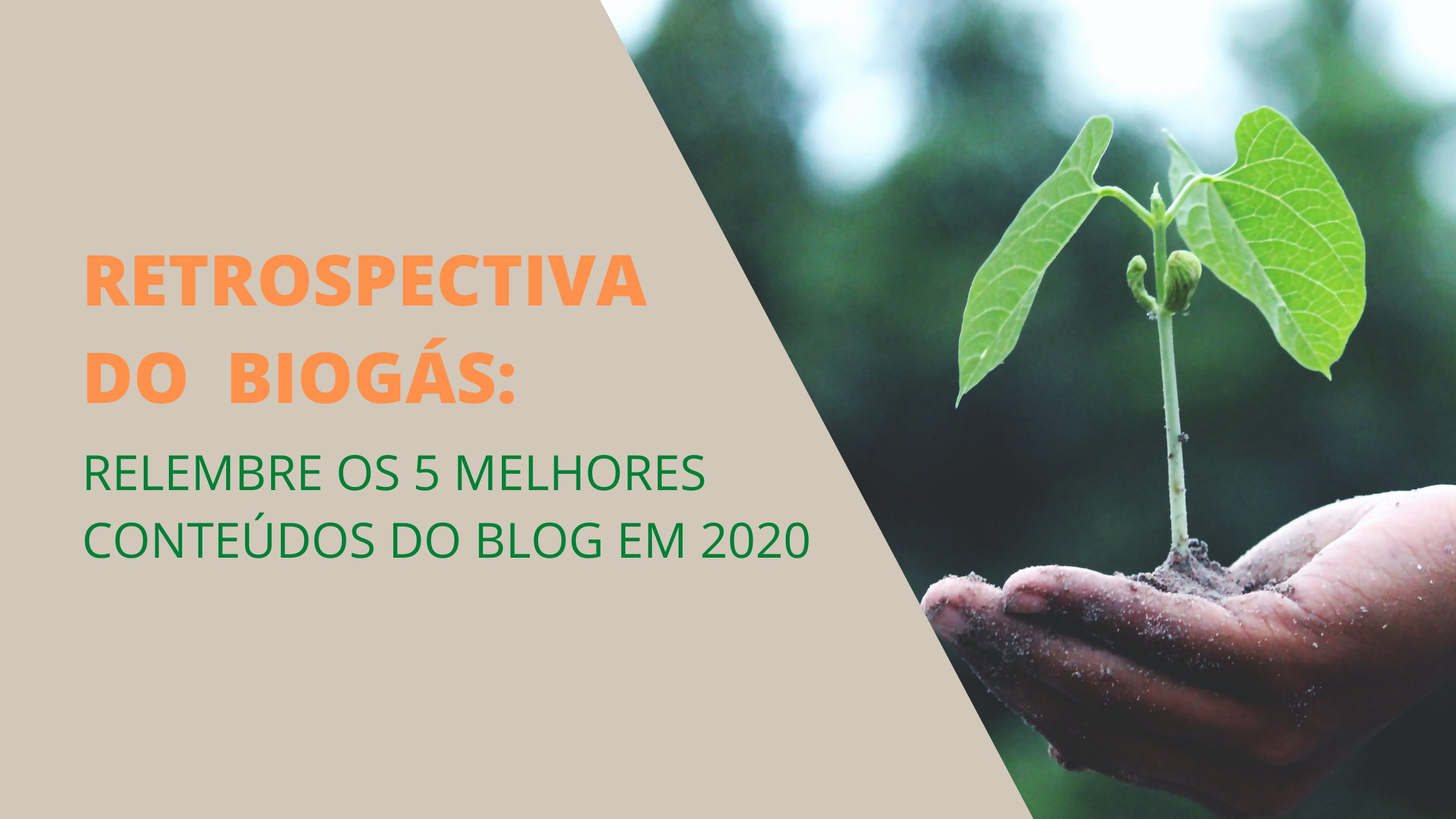 Retrospectiva do blog do biogás